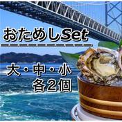 徳島県産 天然 岩牡蠣 おためしSet  各2ヶ  6ヶ入 徳島県 通販