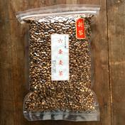 【三重県 熊野産】 無農薬栽培  天日干し 六条麦茶 300g  300g お茶(その他のお茶) 通販