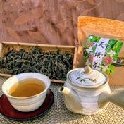 みんなの天供茶(あまちゃ)+プレゼントつき 50g お茶(その他のお茶) 通販