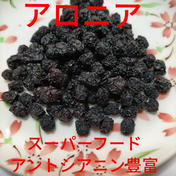 【スーパーフード】セミドライアロニア(アントシアニン豊富♪)33g×4個(やわらかめの乾燥したてを発送)新潟県産 33g✕4個 果物(その他果物) 通販