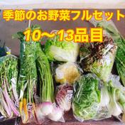 のぐちファーム 【常温タイプ】厳選!のぐちファーム季節の野菜セット
