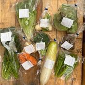元氣のお裾分けbox。 お野菜box Mサイズ 9品〜10品