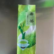 鹿児島の番茶(500g)  初夏の便り 新茶葉10割。 茶カテキンたっぷり。 500g お茶(その他のお茶) 通販
