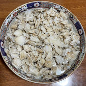 香り高いブナハリタケの水煮袋詰め 500g 500g 果物や野菜などのお取り寄せ宅配食材通販産地直送アウル