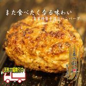 自家特製手造りハンバーグ「近江牡丹」120g×8個 手造りハンバーグ120g×8枚 滋賀県 通販