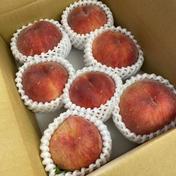 桃 家庭用 2kg箱 果物(もも) 通販