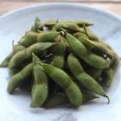 まぼろしの福鉄砲枝豆☆自然栽培 1.5kg 野菜(豆類) 通販