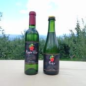 マルダイ大場農園のりんごワインと新酒シードルのハーフボトルセット りんごワイン375ml、シードル375ml お酒(その他お酒) 通販