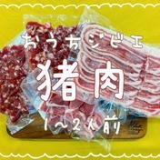 【簡単レシピ付】おうちジビエ!猪肉3種セット700g(1〜2人前) 猪肉700g(スライス、粗挽きミンチ 、煮込み用カット) 肉(猪肉) 通販