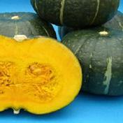 カボチャ(1玉) 農薬不使用 2キロ~3キロ 果物や野菜などのお取り寄せ宅配食材通販産地直送アウル