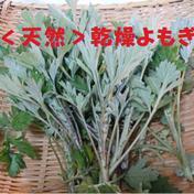 新芽のみ使用!香り抜群!乾燥よもぎ 【天然】<送料無料> 乾燥ヨモギ*1パック(50g) 1パック(50g) お茶(その他のお茶) 通販