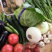 野菜ソムリエが選ぶ!朝採り野菜野菜詰合せセット 季節によりますが、約6種類ほど詰めさせていただきます^ ^ 滋賀県 通販