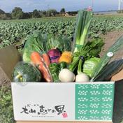 とっとり・だいせん 新鮮野菜直送便(おまかせセット) 10~13品目 果物や野菜などのお取り寄せ宅配食材通販産地直送アウル
