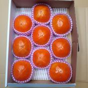 化粧富有柿(12玉から9玉)約3kg 約3kg 福岡県 通販