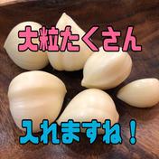 【激安】青森県産むきにんにく大粒ぞろい500g➕おまけたっぷりサービス 500グラムオーバー 野菜(にんにく) 通販