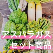野菜セット アスパラつき 10kg以内 長崎県 通販