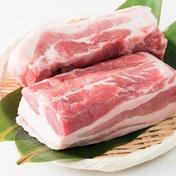 健酵豚 半頭ブロックセット 約25キロ 肉(豚肉) 通販