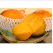 福馬果樹園 サン太秋柿3キロ家庭用7〜9玉(大玉) 3kg