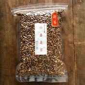 【三重県 熊野産】 無農薬栽培 天日干し 六条麦茶 (300g×2個セット)  300g ×2 お茶(その他のお茶) 通販