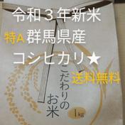 【お試し】特A取得!群馬のコシヒカリ(精米)1㎏ 送料込み 1㎏ 群馬県 通販