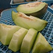 北海道産、青肉メロン2個入り 3.5~4.5kg  果物(メロン) 通販