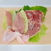 みやざき地頭鶏「半身」セット*冷凍発送のみ* 1.0kg前後 肉(鶏肉) 通販