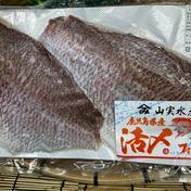 【冷凍】天然真鯛フィーレ腹骨取り(加熱用)真空 2枚入り 1袋/約0.6kg~1kg 鹿児島県 通販