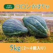 【数量限定】ロロンかぼちゃ 5kg 5kg 上田ファーム店
