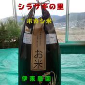 ボカシ米(コシヒカリ)10kg 10kg 長野県 通販