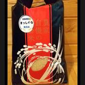 青森県産無洗米まっしぐら10kg 10kg 果物や野菜などのお取り寄せ宅配食材通販産地直送アウル