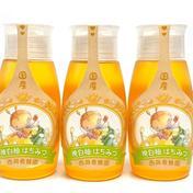 【お得な3本セット】純粋国産 晩白柚蜂蜜500g3本セット 500g 3本セット はちみつ 通販