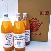 3種の葉とらずりんごのジュース飲み比べセット 1リットル入瓶✕3本 加工品(セット・詰め合わせ) 通販