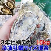 デカい牡蠣 殻付き 牡蠣 3年牡蠣 10kg 冷凍便 送料無料!10キロ 宮城県産 殻付き牡蠣 殻付き 殻付 カキ 加熱用 松島牡蠣屋 10kg 果物や野菜などのお取り寄せ宅配食材通販産地直送アウル