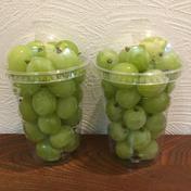 南信州産シャインマスカット 規格外品 カップ入400g 200g入 2カップ 果物や野菜などのお取り寄せ宅配食材通販産地直送アウル