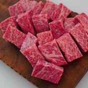 【お試し期間限定価格】佐賀県産和牛の至高のサイコロステーキ 2人前  300g 肉(牛肉) 通販