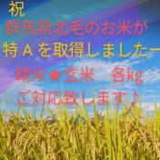 特A 令和3年【新米】コシヒカリ(玄米)10㎏ 10㎏ 群馬県 通販