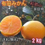 有田みかん🍊4S〜Lサイズ混合 北海道・沖縄への配送ができません。ご了承ください。 2kg(箱込) 果物(みかん) 通販