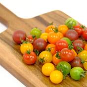 IT野菜/ミニトマト150g おまかせミックス 150g×4個 岩手県 通販