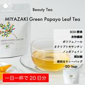〜カラダが喜ぶ栄養満載〜MIYAZAKI Green Papaya Leaf Tea(ティーバッグ20個入り)【送料最安】 30.0g(1.5g×20袋) お茶(その他のお茶) 通販