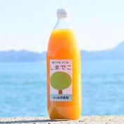 しまでこジュース(3本セット) 1リットル x 3 本 愛媛県 通販