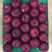 スターキング25玉5㎏ 5.2kg 果物や野菜などのお取り寄せ宅配食材通販産地直送アウル