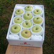 特別栽培りんご【ご家庭用】王林3キロ 3キロ(9〜12玉) 果物や野菜などのお取り寄せ宅配食材通販産地直送アウル