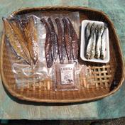 晩酌の友達 フィッシュジャーキー5 本、鯖燻製2枚、マイワシの丸干し8尾、濃厚塩辛70グラム 魚介類(セット・詰め合わせ) 通販