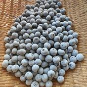 お徳用2キロ、そのまま食べれる完熟冷凍ブルーベリー 2.0kg 果物や野菜などのお取り寄せ宅配食材通販産地直送アウル