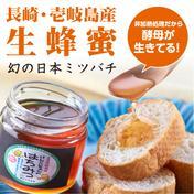 【壱岐島産】日本ミツバチのはちみつ 300g【瓶入り】 300g はちみつ 通販