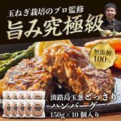 淡路島たまねぎハンバ-グ150g×10個 1.5kg 肉 通販