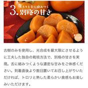 家庭用L〜2L 12〜14玉入り 古い樹から採れた長生き次郎柿『長寿郎』 3kg 果物(柿) 通販