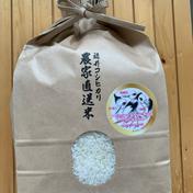 コウノトリ誕生記念 「幸せを運ぶお米」こしひかり3kg 3kg 米 通販