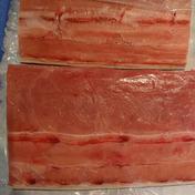 長崎県近海産 カジキマグロ ブロック身1kg 1.0kg 魚介類(その他魚介) 通販