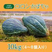 【数量限定】ロロンかぼちゃ 10kg 10kg 上田ファーム店